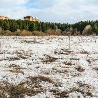 А снега всё меньше... :: Юрий Митенёв