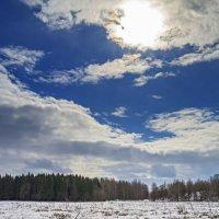 Солнышко весеннее греет всё сильней :: Юрий Митенёв