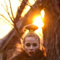 солнце :: alexia Frame