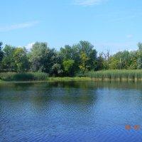 Одно из озер на о.Сарпинский :: Марина Сеньшина