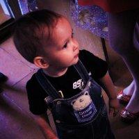 малыш :: Anna Vologina