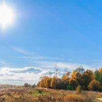 Золотые краски осени. Октбрь 2013 :: Анатолий Клепешнёв
