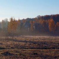 Осенний рассвет :: Владимир Воробьев