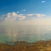 Финский залив :: Laryan1