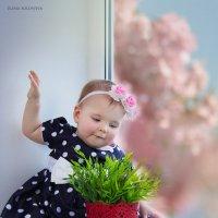 А у нас уже весна ;) :: Елена Соловьёва