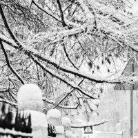 зимние улицы :: Олеся Семенова