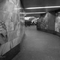 Лабиринты подземки :: Сергей Гойшик