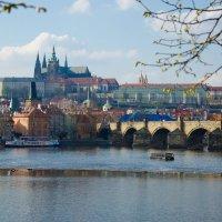 Вид на Карлов мост (Прага) :: Александр Антонович