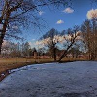 Ледяной пруд :: Владимир Макаров