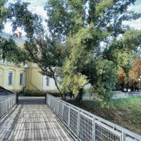 В парке :: Dasha Darsi