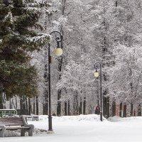 Зима в парке :: Леонид Никитин