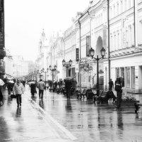 Наблюдаю немое кино :: Ирина Данилова