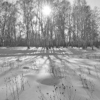 Скоро весна :: Сергей Яснов