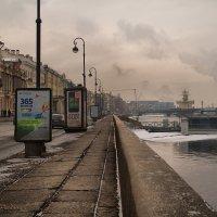Пасмурный  февраль... :: Марина Павлова