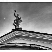 Ночная нимфа :: Сергей Базылев