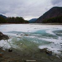 река Катунь, Республика Горный Алтай :: Валерия Стригунова