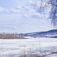 Весна в Сибири :: Светлана Белая