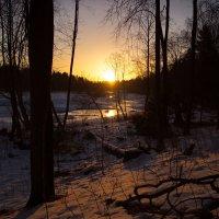 Рассвет над рекой :: Светлана Шмелева