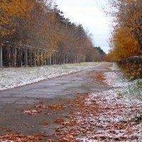 Первый снег :: George de Turma