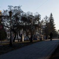 Утро в городе. :: Sergey Kuznetcov