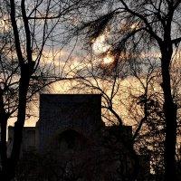 Ночь над древней Бухарой. :: Михаил Столяров