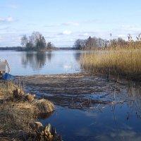 холодный апрель :: liudmila drake