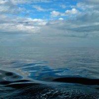 Утро в Тихом океане :: Ирина Червинская