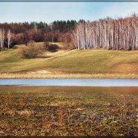 два берега :: лиана алексеева
