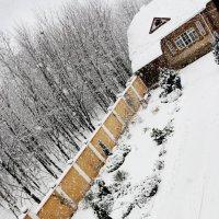 зима 2013 :: Tatiana Florinzza