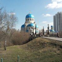 В Орехово-Борисово :: Владимир Прокофьев