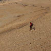 заблудившийся в песках :: Алексей Соловьев