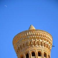 Самое высокое сооружение в старой Бухаре (46,5 метра). :: Михаил Столяров