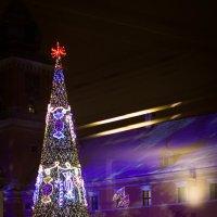 Новогоднее настроение :: Valentina Zaytseva