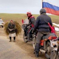 Встреча на дороге :: Валерий Талашов