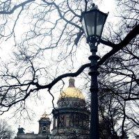 Питер :: Юлия Ярушкина