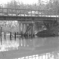 Просто мост :: Василиса Вишневская
