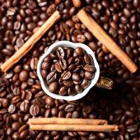 coffee :: Katie Voskresenskaia