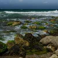 Море :: Alex Krasny