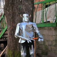 *Местный* рыцарь :: Андрей Куприянов