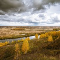 Просто... осень... :: Александр Никитинский
