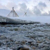 из под снега, из под льда прибежала к нам река... :: Ирэна Мазакина