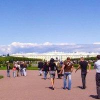 В Петергоф ! :: vadim