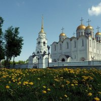 В жёлтом   море! :: Владимир Шошин