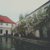 Вальдштейнский сад, Прага :: Anastasia Titova