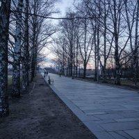Уютный час :: Евгений Никифоров