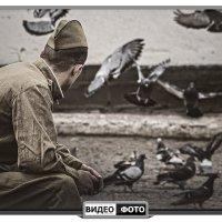 Птицы мира :: Антуан Мирошниченко