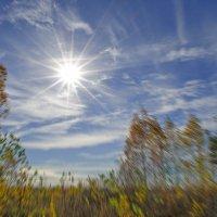 уж небо осенью ... :: Алексей -