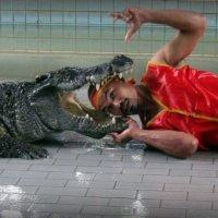 Герой с Крокодиловой фермы. :: МАК©ИМ Пылаев-Пшеничников
