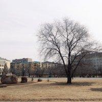 Парк :: Елена Чупрова