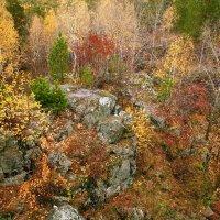 Осень :: Александр Коликов